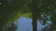 Water reflection Man walking over treetrunk rimples in water Adventures 4K Ul Stock Footage