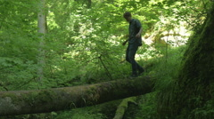 Balance Walking over Tree Trunk Young Adult Man in Nature 4K Ultra HD - stock footage
