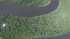Aerial view of the Amazon rainforest, Brazil Stock Footage