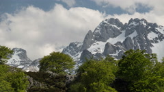 Picos de Europa Asturias Spain green tree rocky ridge high snowy mountains  Stock Footage