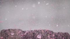 Wine glass gun shot in native slow motion scene Stock Footage