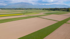 Aerial: High Angle Shot of Multicolored Fields Stock Footage
