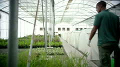 Farm worker walking at greenhouse. - stock footage