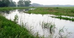 Exteme rainfall overflowed river netherlands Stock Footage