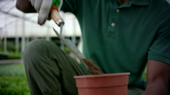 Farm worker filling plant pot with soil at greenhouse. - stock footage