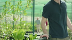 Farm worker with customer at plant nursery. - stock footage