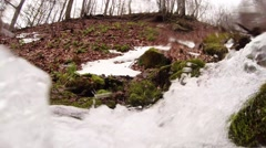 Rushing Flow of Water of the Stream in a Forest in the Mountains Close up Stock Footage
