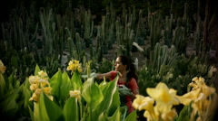 Woman pruning flower at garden. Stock Footage