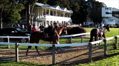 Race horses parade at rural track. Stock Footage