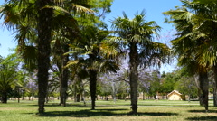 People walking in Turia park Valencia Stock Footage