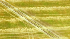 Aerial View of Golden Agricultural Field - stock footage