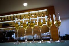 Row of champagne glasses Stock Photos