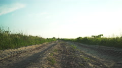 Old dirt ground road between fields up and down moves from electronic stabilizer Stock Footage