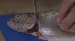 Removing head and tail from a trout; tilt close-up Stock Footage