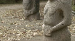 Body of Several Stone Statues Standing on Ground Strewn With Leaves Stock Footage