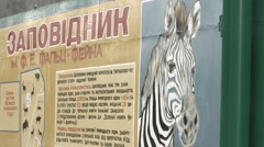 Stand With Picture of Zebra and People Near Entrance With Gate Panorama From Stock Footage