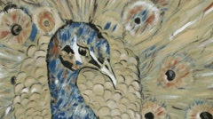 Partially Mark Erased Picture of Peacock Closeup Stock Footage