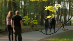 Blurred background of people activities in park with bokeh, spring and summer Stock Footage
