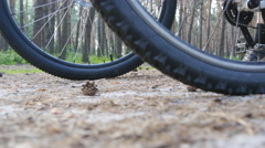 Two bikers start riding bikes through forest path. Low Angle View Stock Footage