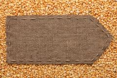 Pointer of burlap lying on a peas background Stock Photos