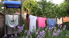 Private garden with laundry drying on rope Stock Footage
