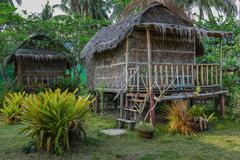 Cottages are made of palm leaves in the Tropics - stock photo