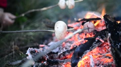 Cooking mushrooms and sausages on bonfire - stock footage