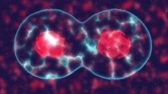 Video that demonstrates the fusion of cells - stock footage