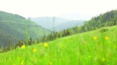 Green Grassed Field in Krkonose Mountain Stock Footage