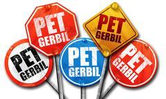 Pet gerbil, 3D rendering, street signs Stock Illustration