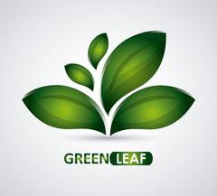 Green design. leaf icon. White background, graphic vector - stock illustration