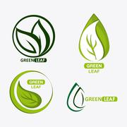 Set of green leves design. nature icon. White background, graphic vector Stock Illustration