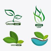 set of green leves design. nature icon. White background, graphic vector - stock illustration