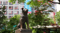 Hachikō - Shibuya's Famous Dog Statue and Meeting Point Stock Footage