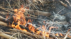 Fire burning the bamboo shoot Stock Footage