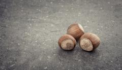 Hazelnuts with shell on stone table Stock Photos