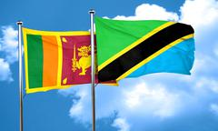 Sri lanka flag with Tanzania flag, 3D rendering Stock Illustration