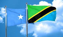 Somalia flag with Tanzania flag, 3D rendering - stock illustration