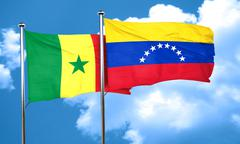 Senegal flag with Venezuela flag, 3D rendering - stock illustration