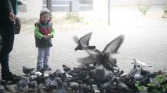 Boy feeding pigeons with bread Stock Footage