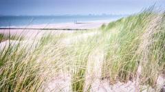 Summer seaside landscape with sand dunes. North sea coast. 4k Stock Footage