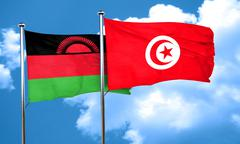 Malawi flag with Tunisia flag, 3D rendering - stock illustration