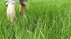 Man walks inside grass - stock footage