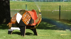 Installation Seven Elephants in the Mikhailovsky Garden Stock Footage