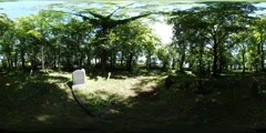 360Vr Video Man Silhouette Old Cemetery Green Lawn Tomb Stones in Sunny Day Stock Footage