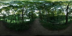 360Vr Video Dirt Road in the Dense Park Spherical Panorama Soft Evening Light Stock Footage