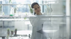 4K Research scientist working in laboratory studying plant life & making notes Stock Footage