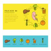 Banner. Vitamins and minerals. Folic acid Stock Illustration