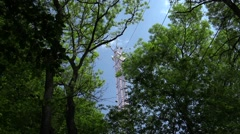 Scientific research in the forest using the eddy covariance, measurement Stock Footage