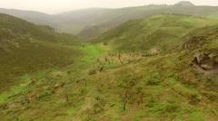 Aerial PERU: Unique Ecosystem (Lachay Hills) - stock footage